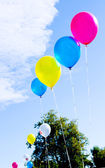 Multicolored balloons — Foto de Stock
