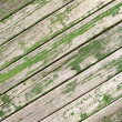 Green old wooden fence panels — Stock Photo #37344733