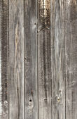 Old barn wood board — Stock Photo