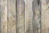 Old barn wood board — Stock Photo