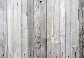 Old barn wood board — Fotografia Stock