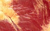 сердце мяса — Стоковое фото