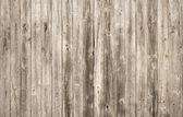 バック グラウンド — ストック写真