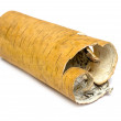 Stock Photo: Rolled up in roll birch's bark