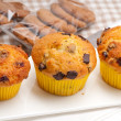 Fresh chocolate and raisins muffins — Stock Photo