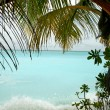 Tropical paradise — Stock Photo #37403429