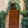 Wooden residential doorway in Tuscany. Italy - Lizenzfreies Foto