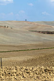 Crete Senesi - The landscape of the Tuscany — Stock Photo