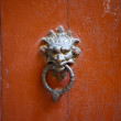 Antique Door Knocker — Stock fotografie #12763930