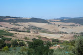The hills around Montepulciano. Tuscany. Italy — Stock Photo