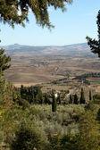 Na wzgórzach wokół pienza i monticchiello — Zdjęcie stockowe