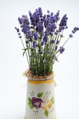 Watering Can, Jug and Lavender isolated on white — ストック写真