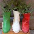 Foto Stock: Old shoes processed on flowerpots