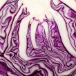 Red Cabbage cross section on White Background — Stockfoto