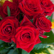 Beauty Red Roses — Stock Photo #13516008