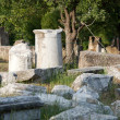 Ancient ruins in Troy. Turkey — Stockfoto #13600175