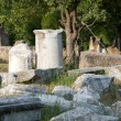 Ancient ruins in Troy. Turkey — Photo #13600175