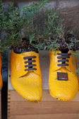 Old shoes processed on flowerpots — Stock Photo