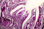 Red Cabbage cross section on White Background — Stock Photo