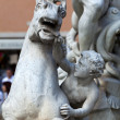Piazza Navona, Neptune Fountain in Rome, Italy — Stock Photo #16023297