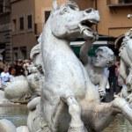 Piazza Navona, Neptune Fountain in Rome, — Stock Photo #17177151