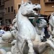 Piazza Navona, Neptune Fountain in Rome, — Stock Photo #17177151