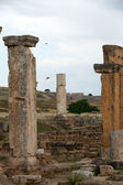Ruins of the ancient city of Hierapolis — Stock Photo