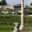Temple of Artemis, one of Seven Wonders of Ancient World — Stock Photo #19061545