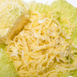 Fresh savoy cabbage  isolated on white background — Stock Photo