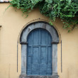 Old wooden door , Tuscany, Italy — Stock fotografie