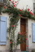 A janela romântica com rosas vermelhas — Fotografia Stock