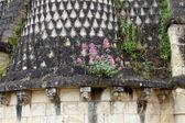 Klášter fontevrault - údolí loiry, francie — Stock fotografie