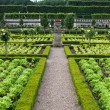 Stockfoto: Gardens and Chateau de Villandry in Loire Valley in France