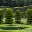 Stock Photo: Splendid, decorative gardens at castles in Valley of Loire