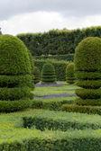 Великолепные декоративные сады на замки в долине Луары — Стоковое фото