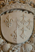 Heraldic motifs in the castle Amboise. .Valley of the river Loire. France — Stock Photo