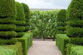 Nádherné, ozdobné zahrady na zámky v údolí Loiry — Stock fotografie