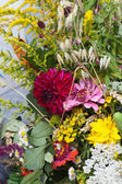 Beautiful bouquets of flowers and herbs — Stock Photo