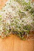 De gezonde voeding. verse spruiten geïsoleerd op witte achtergrond — Stockfoto