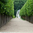 Splendid, decorative gardens at castles in France — Stock fotografie