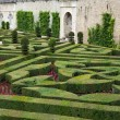 Gardens and Chateau de Villandry  in  Loire Valley in France — Foto de Stock