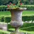 Splendid, decorative gardens at castles in France — Stock Photo