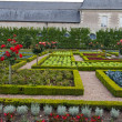 Stock Photo: Gardens and Chateau de Villandry in Loire Valley in France