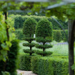Splendid, decorative gardens at castles in France — Stock Photo #35051343
