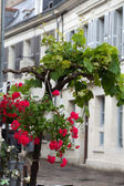 Romantic streets in French country towns in the Valley of Loire — Foto Stock