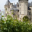 Castle of Saumur in Loire Valley, France — Stock Photo #37753131