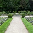 Gardens at Chateau Chenonceau in the Loire Valley of France — Stock fotografie