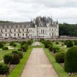 Garden and Castle of Chenonceau. Known as the castle of the ladies was built in 1513 and is one of the most visited in the Loire Valley — Stock Photo #39252555