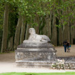 Stock Photo: An avenue of trees in the grounds of the chateau of Chenonceau in France.