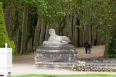 An avenue of trees in the grounds of the chateau of Chenonceau in France. — Stock Photo